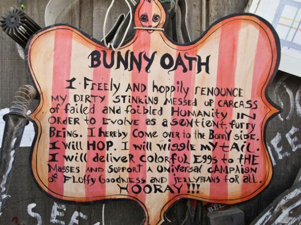 bunny oath