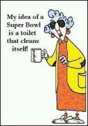 self cleaning toilet super bowl