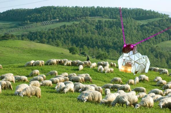 2014 sheep art car
