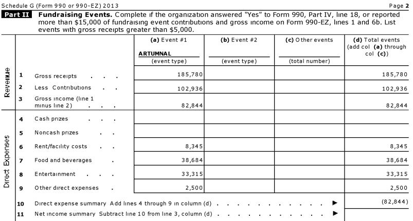 IRS Form 990, 2013
